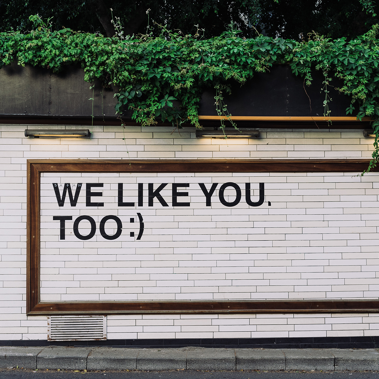image of We Like You Too Photo By Adam Jang On Unsplashsquare